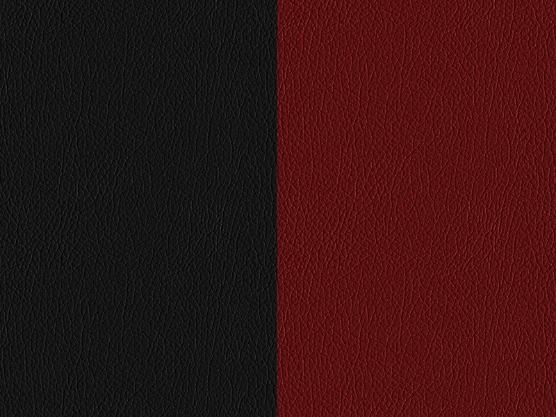 297-Two-tone leather - classic red / black
